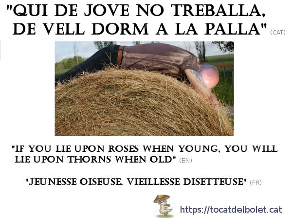 Qui de jove no treballa de vell dorm a la palla