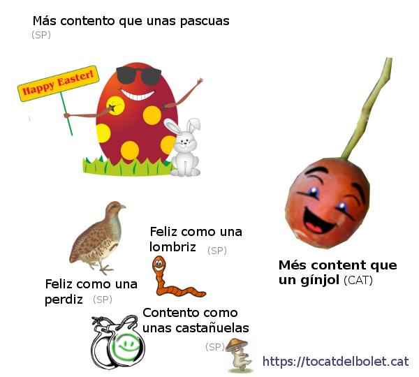 Més content que un gínjol en castellà Més content que un gínjol en espanyol