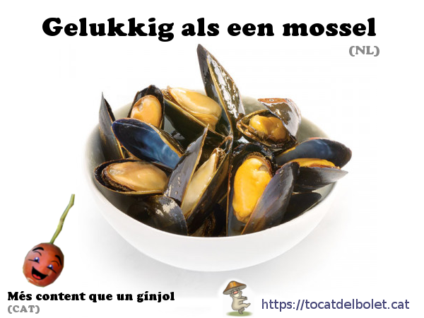 gelukkig als een mossel holandès, neerlandès