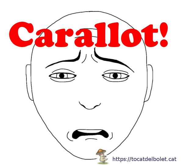 Carallot Insults en català Insults il·lustrats en llengua catalana.