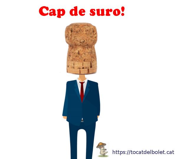 Cap de suro Insults en català Insults il·lustrats en llengua catalana.