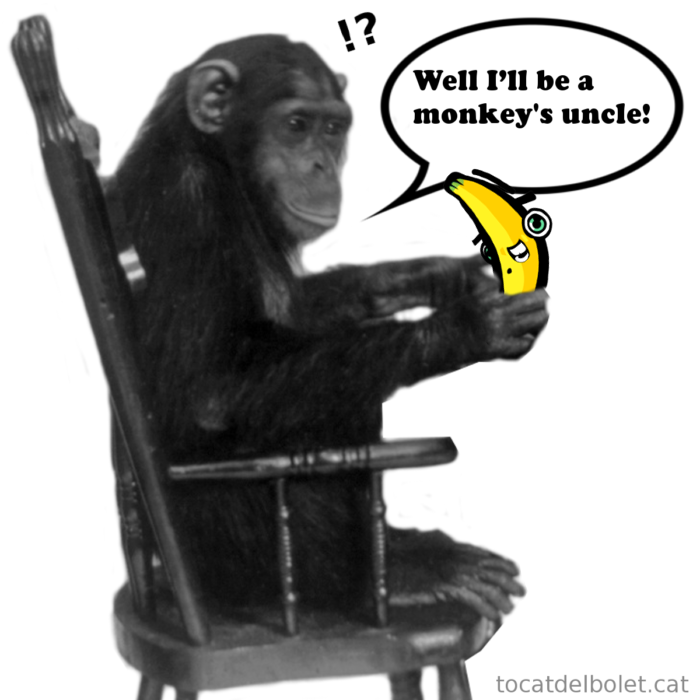 Well, I'll be a monkey's uncle!