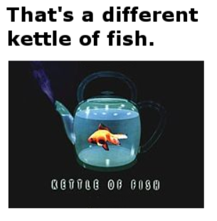 That's a different kettle of fish