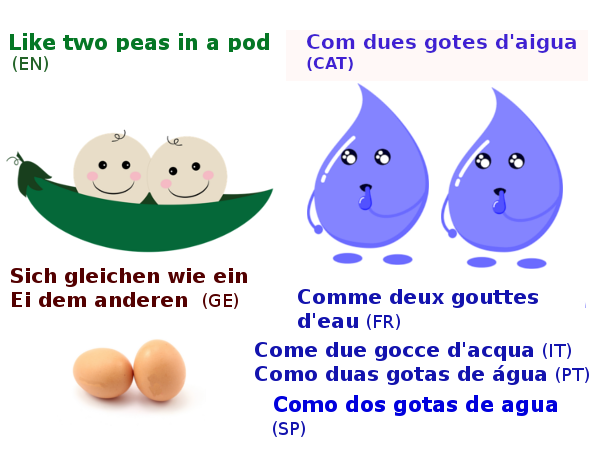 Like two peas in a pod in other languages idioms English idioms in Catalan English idioms in Spanish English idioms in French English idioms in German English idioms in Italian English idioms in Portuguese