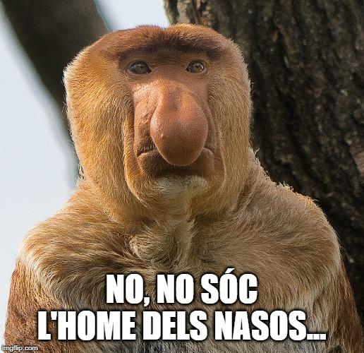 acudits nadalencs acudits de nadal mems de Nadal humor en català home dels nasos Acudits de cap d'any Acudit de cap d'any