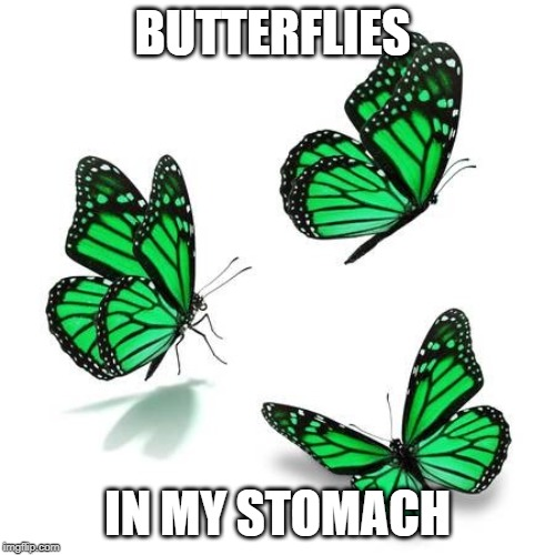 butterflies in my stomach in other languages idiom