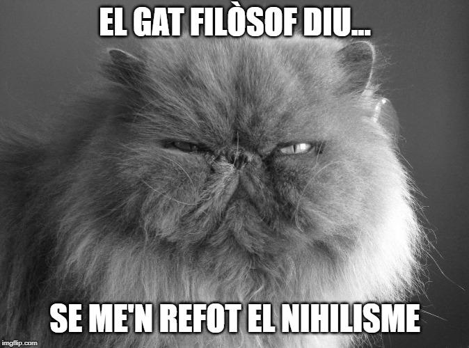acudits en català mem filosofia acudits en català humor en català