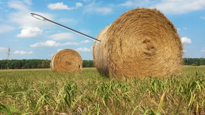 a needle in a haystack  in other languages idioms, English typical expressions