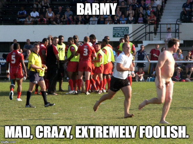 barmy bonkers British English slang words UK Colloquial