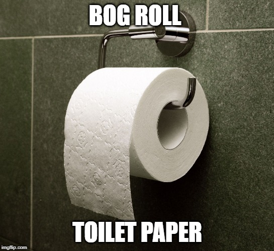 bog roll British English slang words UK Colloquial