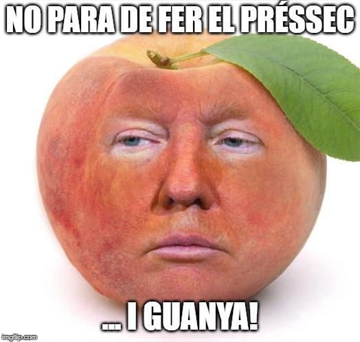 mem trump fer el préssec mems en català  memes en català mems memes catalans mems memes de catalans mems mems catalunya