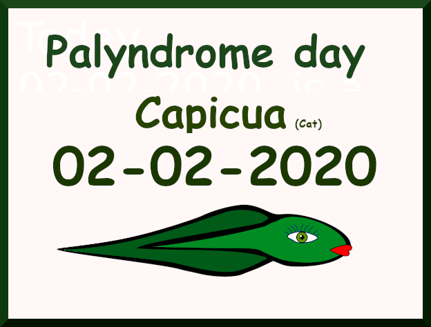 Palyndrome day: 02-02-2020