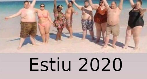 mem coronaviris estiu 2020 acudits coronavirus acudits pandèmia acudits confinament memes mems covid-19
