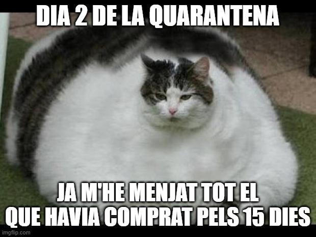 mem meme coronavirus xiste  chiste