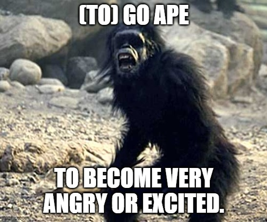 to go ape British English slang