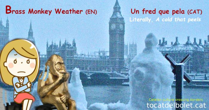 Un fred que pela en anglès