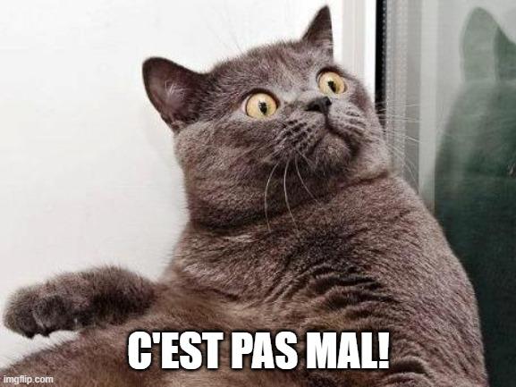 c'est pas mal Déu n'hi do en francès